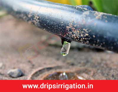 Drip Irrigation System for Home, Potted Plants, Garden, Lawn