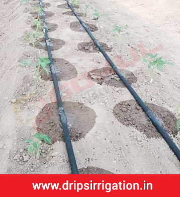 Drip Irrigation Valves, Manufacturer, Suppliers, Exporters in Delhi, Ahmedabad, Gujarat, India
