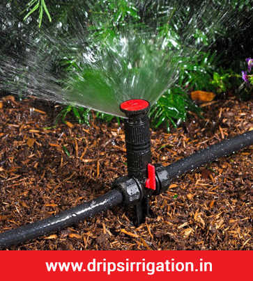 Drip Irrigation System in Ahmedabad, Surat, Delhi, Mumbai, India
